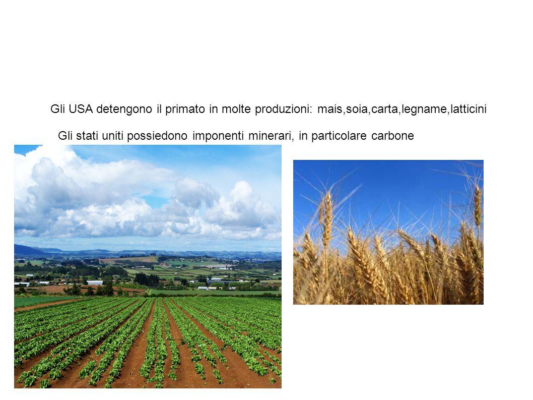 Settore primario Gli USA detengono il primato in molte produzioni: mais,soia,carta,legname,latticini.