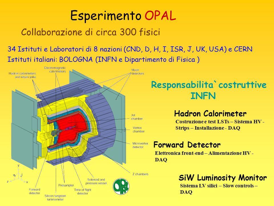 Esperimento OPAL Collaborazione di circa 300 fisici