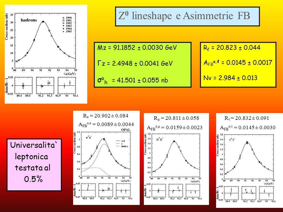 Z0 lineshape e Asimmetrie FB