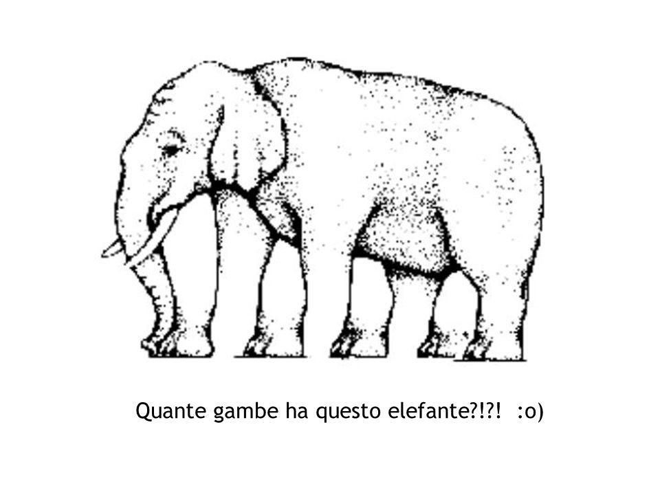 Quante gambe ha questo elefante ! ! :o)