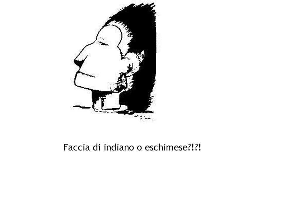 Faccia di indiano o eschimese ! !