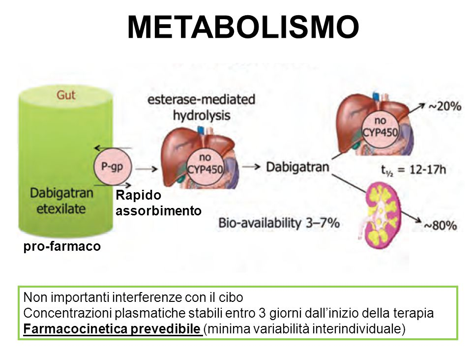 METABOLISMO Rapido assorbimento pro-farmaco