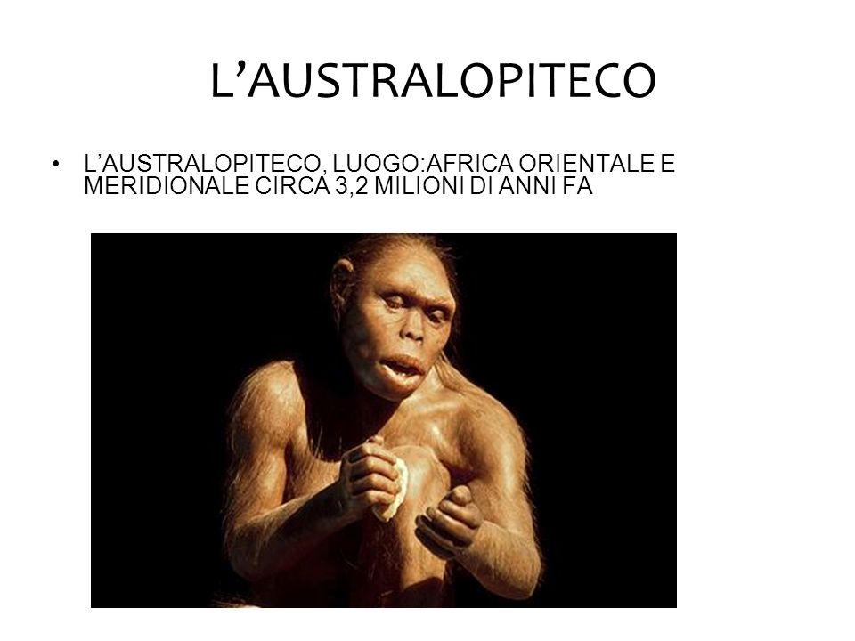 L'AUSTRALOPITECO L'AUSTRALOPITECO, LUOGO:AFRICA ORIENTALE E MERIDIONALE CIRCA 3,2 MILIONI DI ANNI FA.