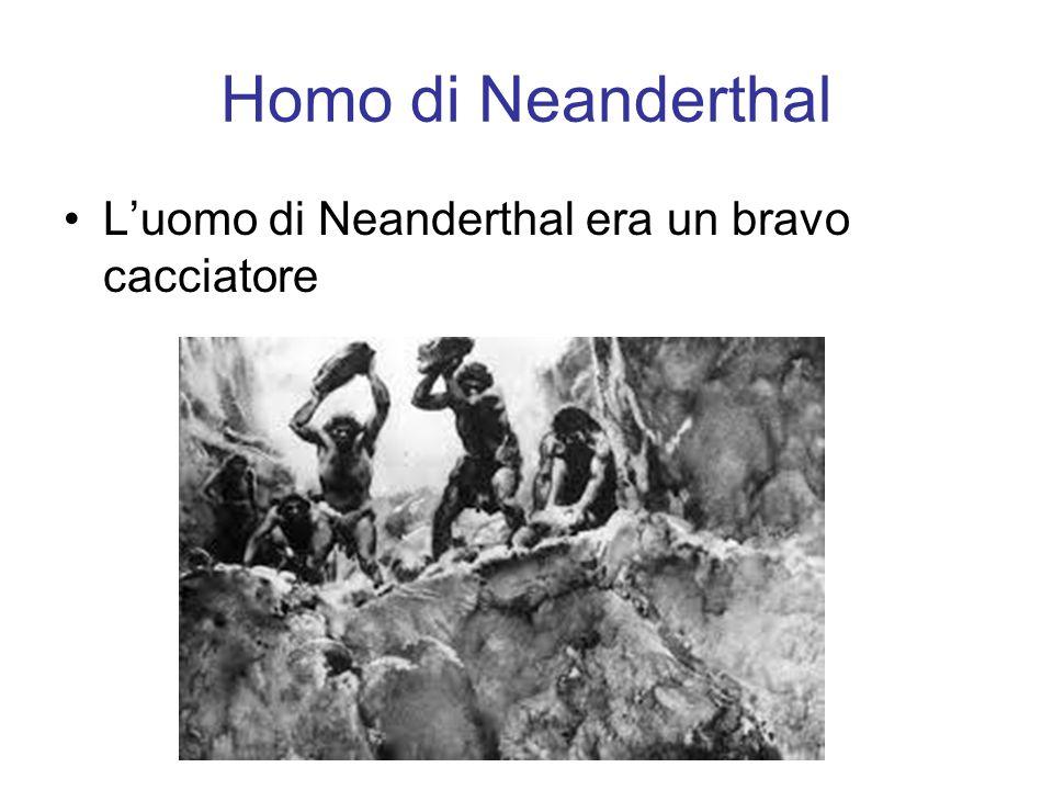 Homo di Neanderthal L'uomo di Neanderthal era un bravo cacciatore