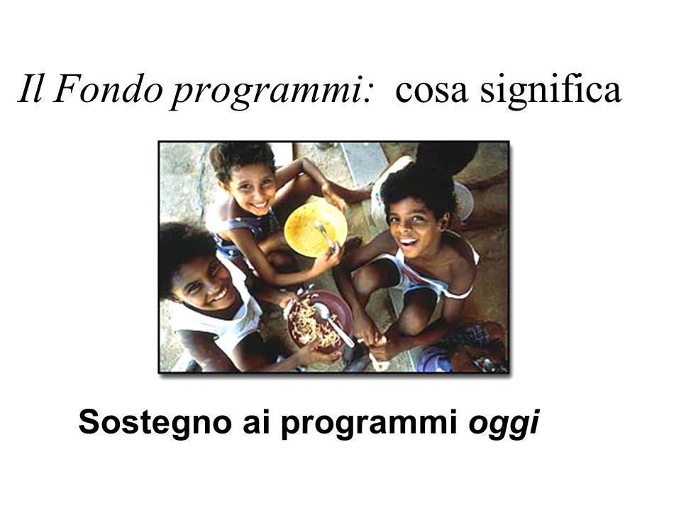 Il Fondo programmi: cosa significa