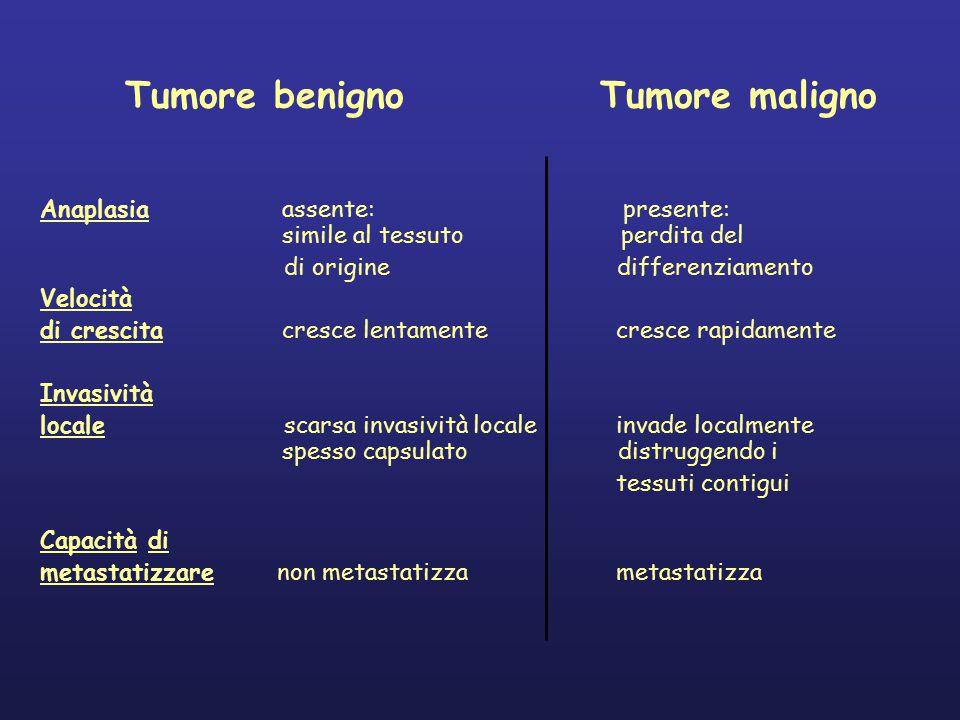 Tumore benigno Tumore maligno