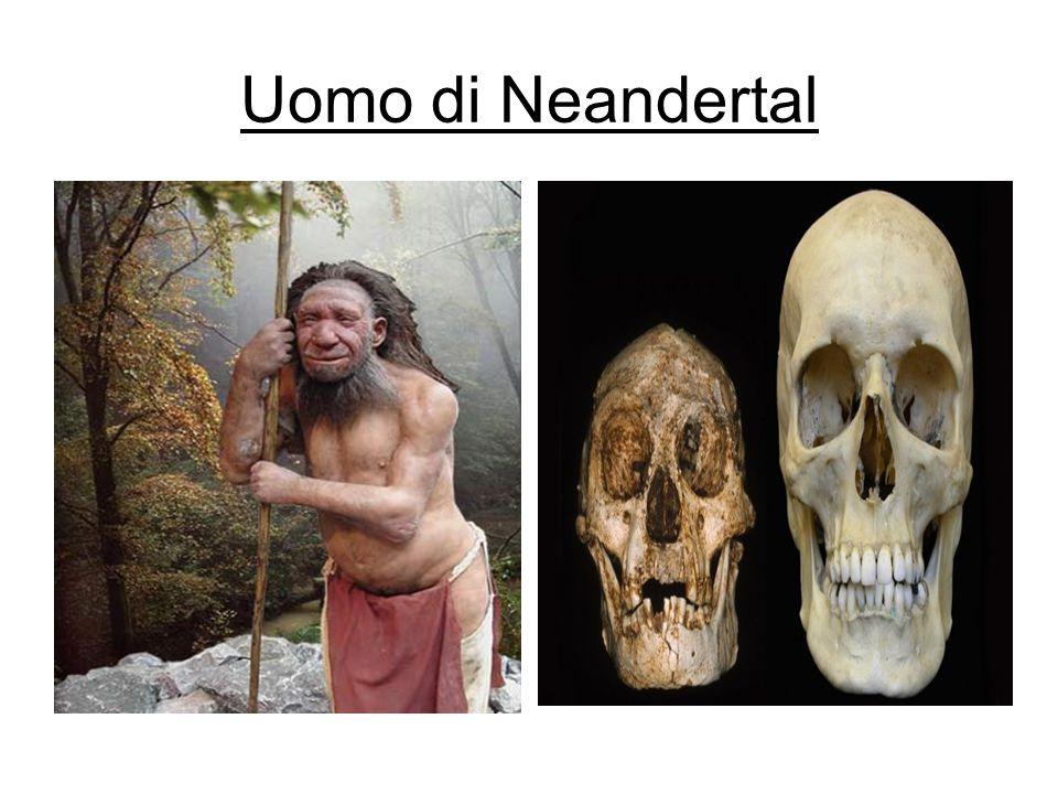 Uomo di Neandertal Confronte dell´uomo di Neandertal per la salute umana