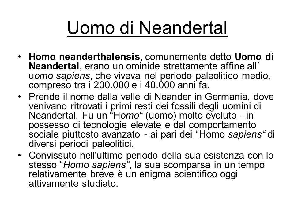 Uomo di Neandertal