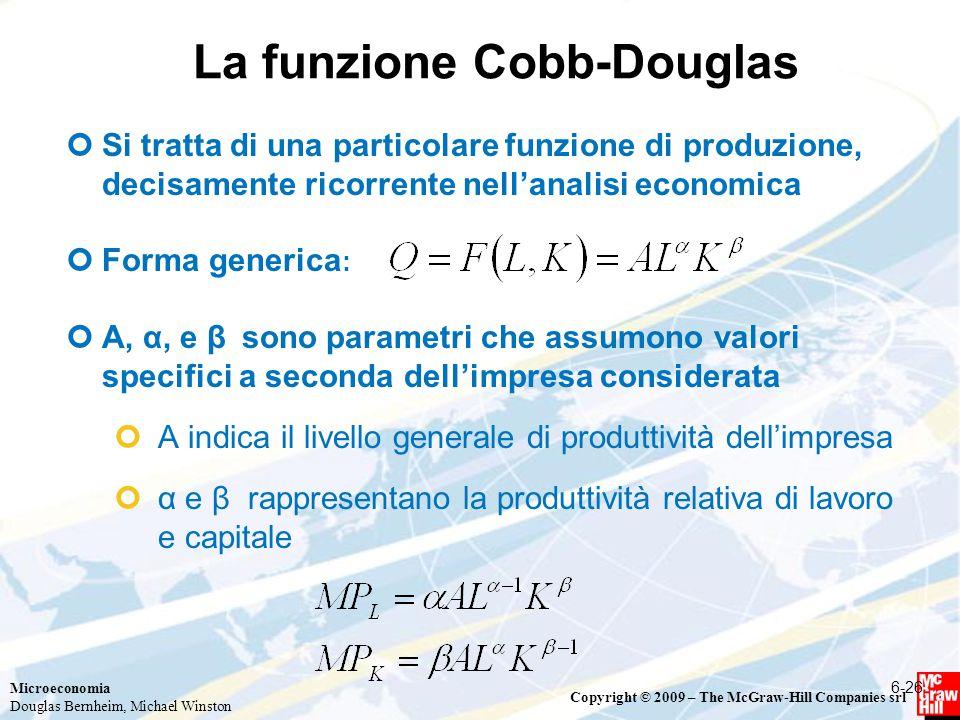 La funzione Cobb-Douglas