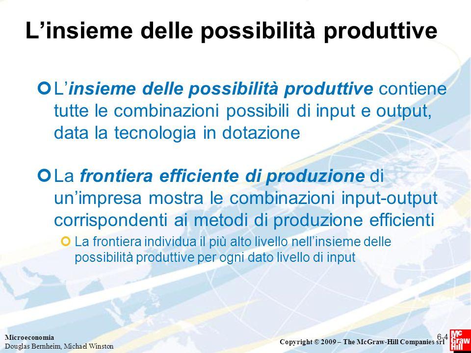 L'insieme delle possibilità produttive
