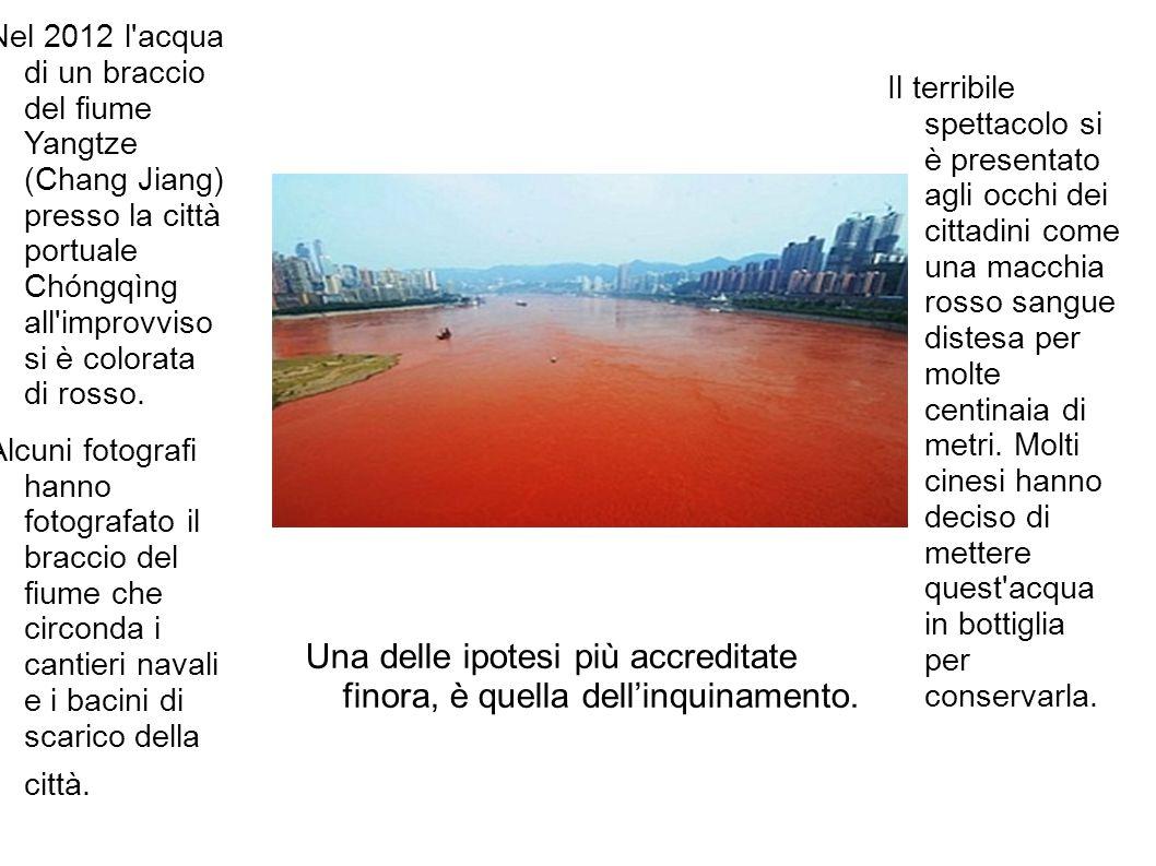 Una delle ipotesi più accreditate finora, è quella dell'inquinamento.