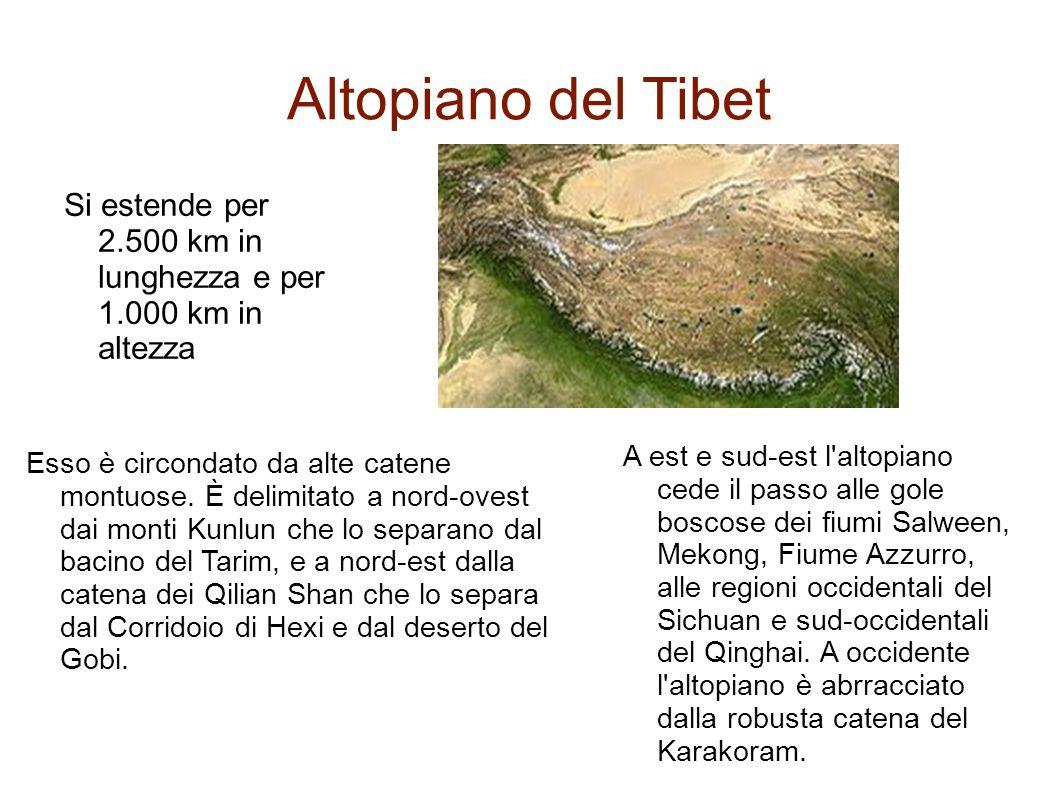 Altopiano del Tibet Si estende per 2.500 km in lunghezza e per 1.000 km in altezza.