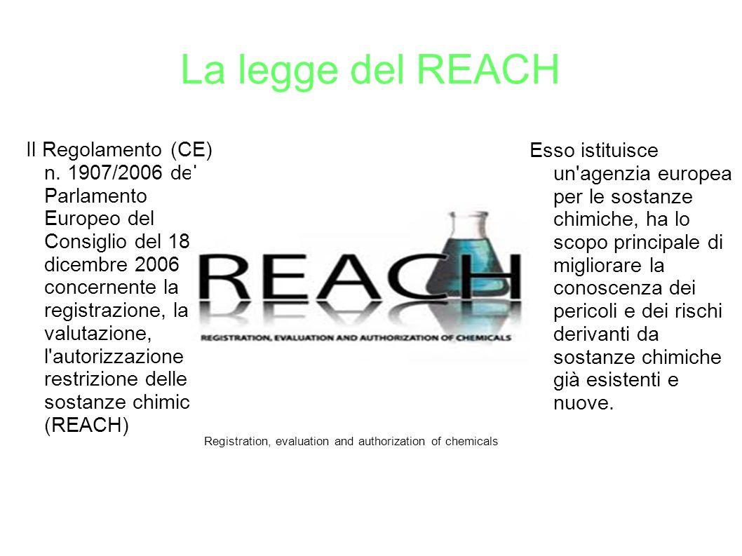 La legge del REACH