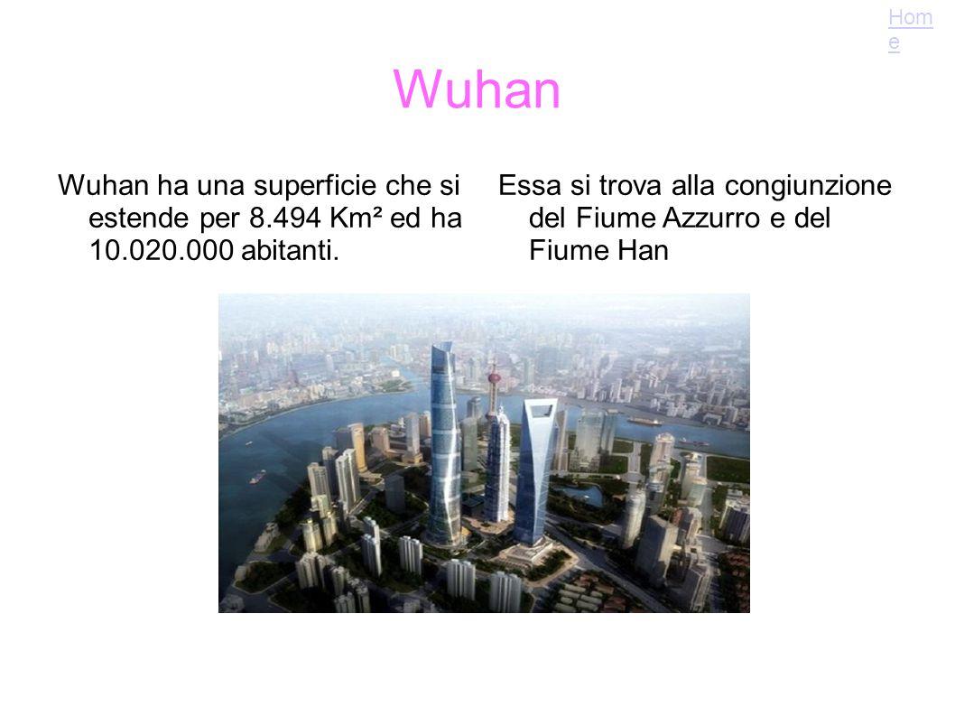 Home Wuhan. Wuhan ha una superficie che si estende per 8.494 Km² ed ha 10.020.000 abitanti.