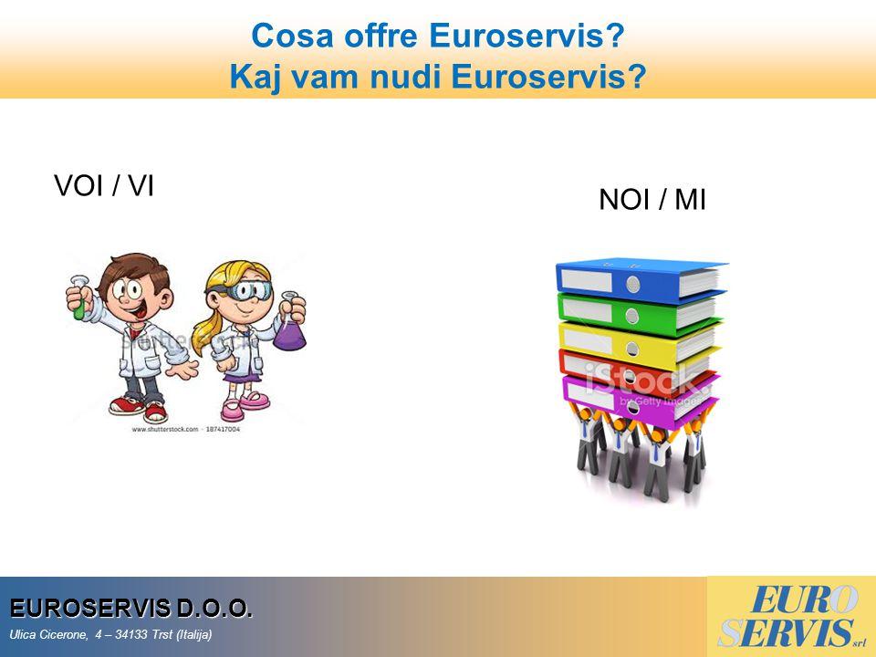 Kaj vam nudi Euroservis