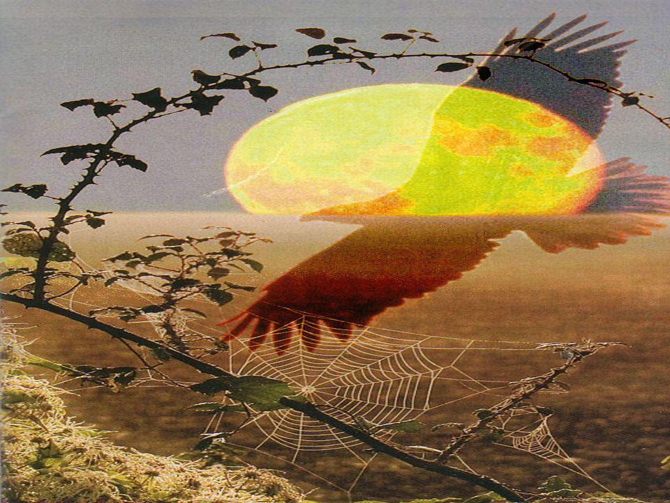 Dal laccio del cacciatore ti libererà, e dalla carestia che distrugge