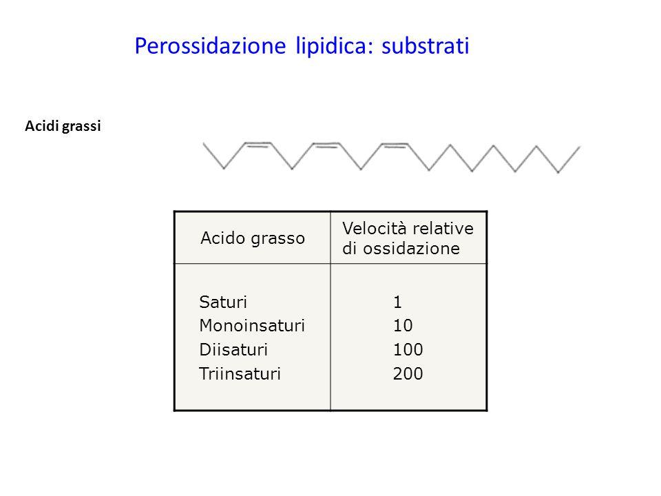 Perossidazione lipidica: substrati