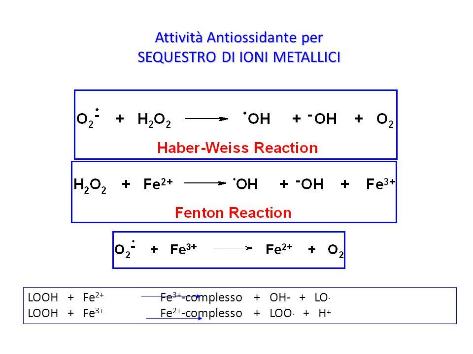 Attività Antiossidante per SEQUESTRO DI IONI METALLICI