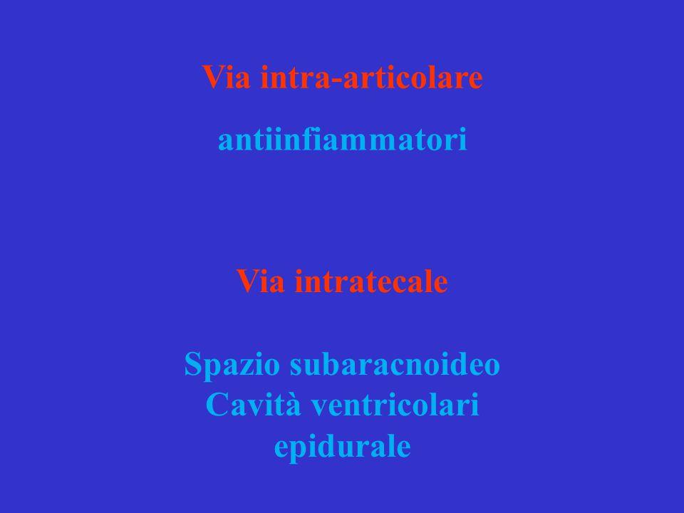 Via intra-articolare antiinfiammatori. Via intratecale. Spazio subaracnoideo. Cavità ventricolari.