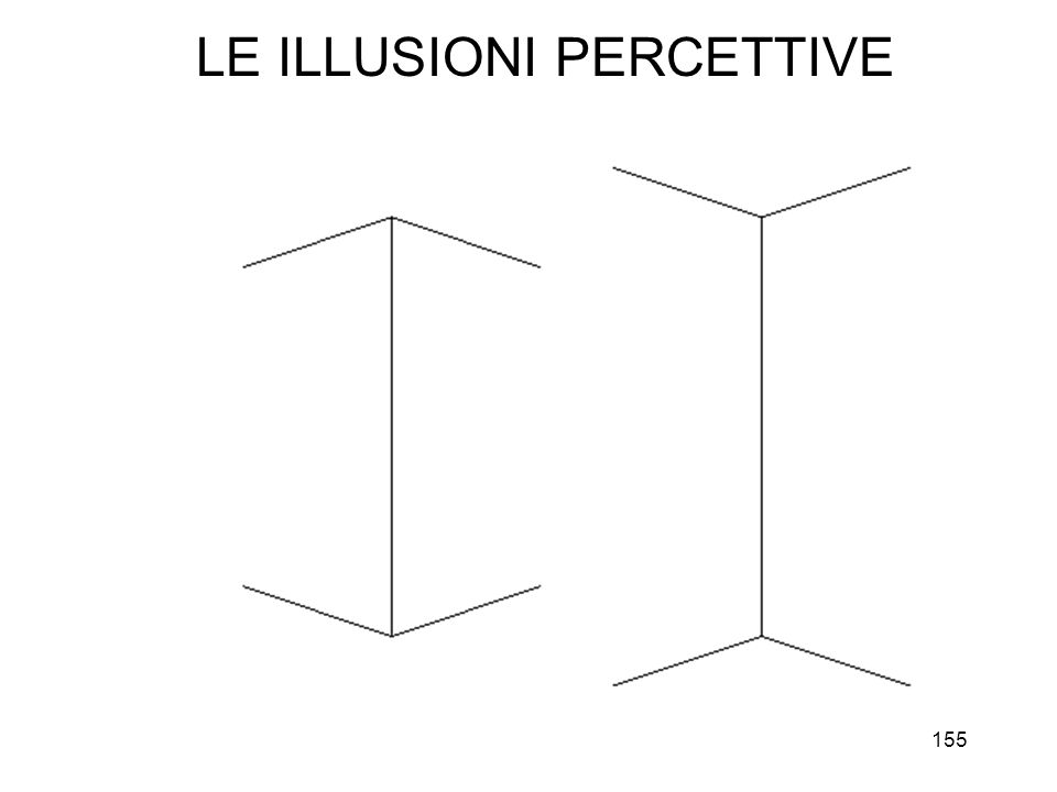LE ILLUSIONI PERCETTIVE