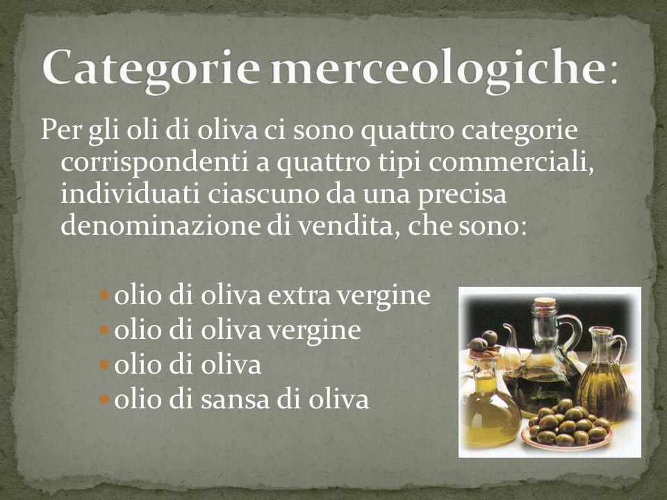 Categorie merceologiche: