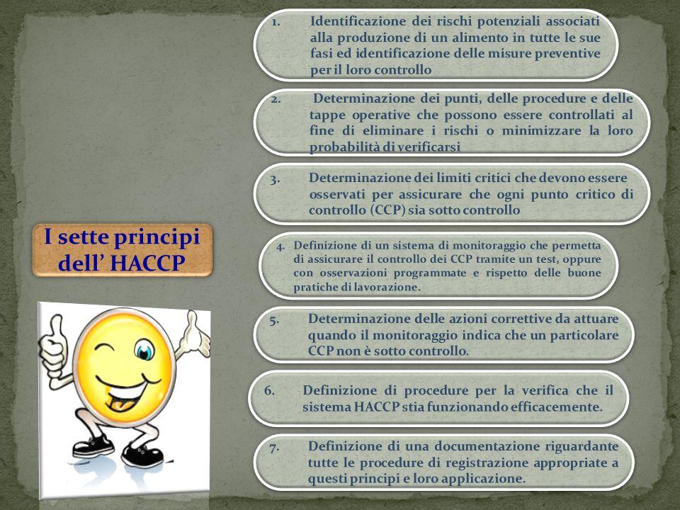 I sette principi dell' HACCP