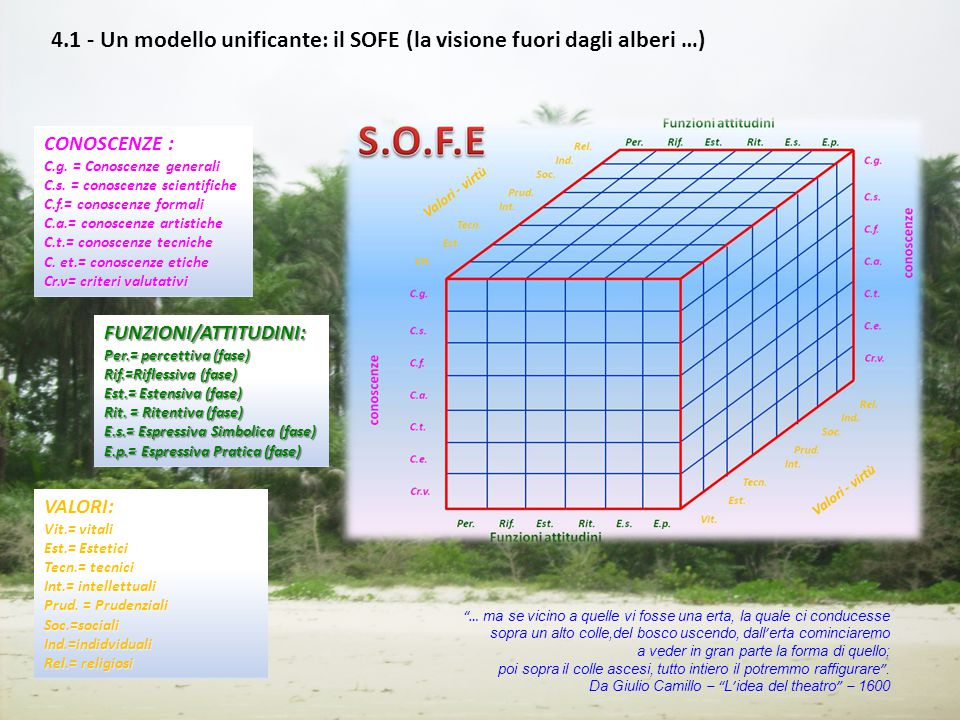 4.1 - Un modello unificante: il SOFE (la visione fuori dagli alberi …)