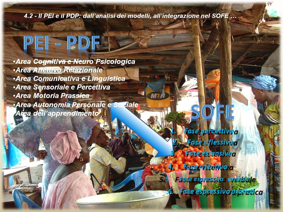 Pei - pdf SOFE Fase percettiva 2. Fase riflessiva 3. Fase estensiva