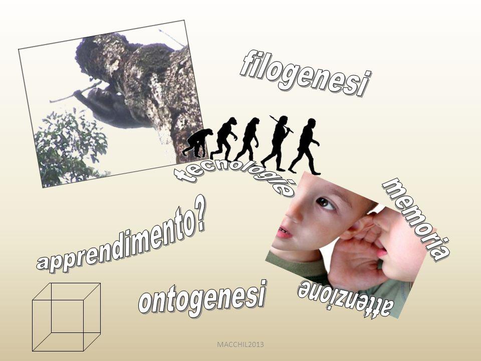 filogenesi tecnologie memoria apprendimento attenzione ontogenesi