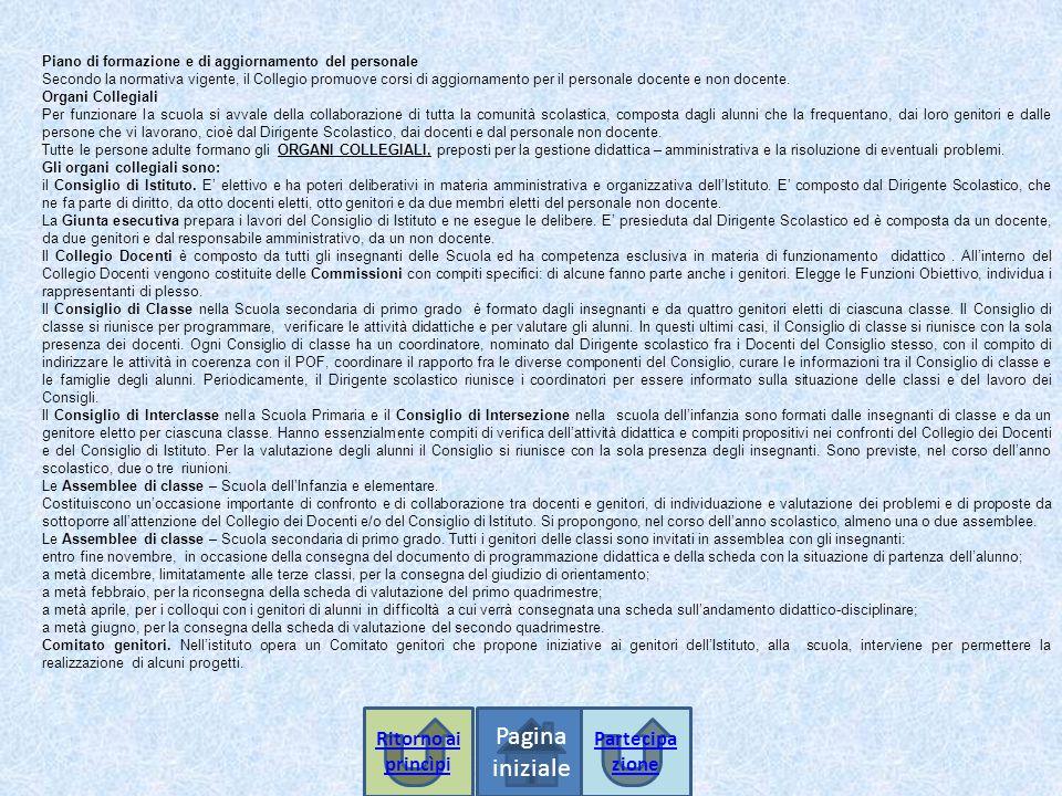 Pagina iniziale Ritorno ai princìpi Partecipazione