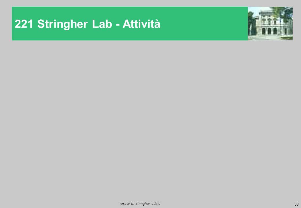 221 Stringher Lab - Attività