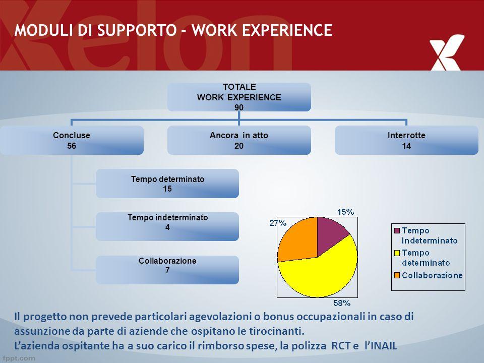 MODULI DI SUPPORTO - WORK EXPERIENCE
