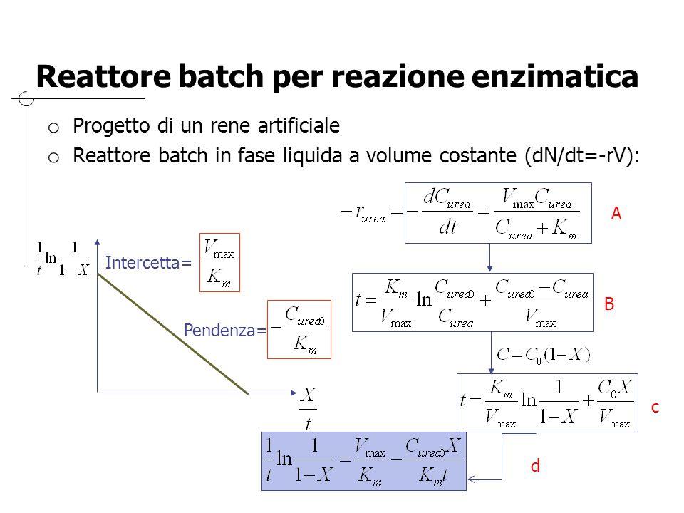 Reattore batch per reazione enzimatica