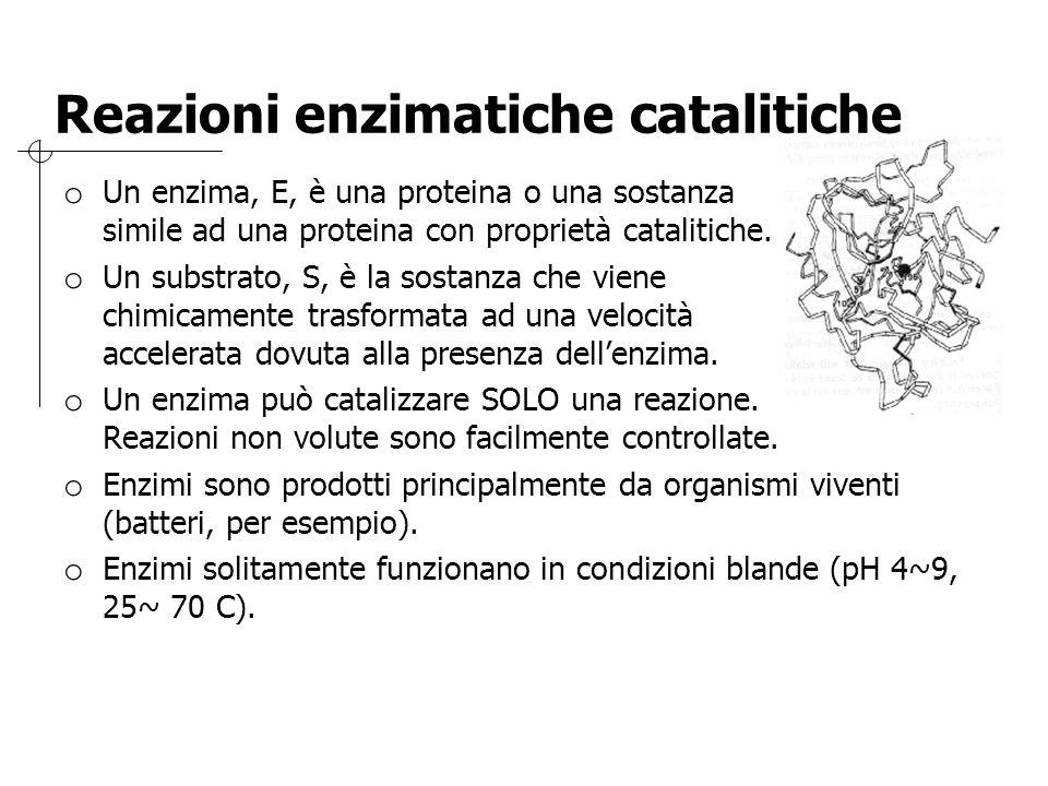 Reazioni enzimatiche catalitiche