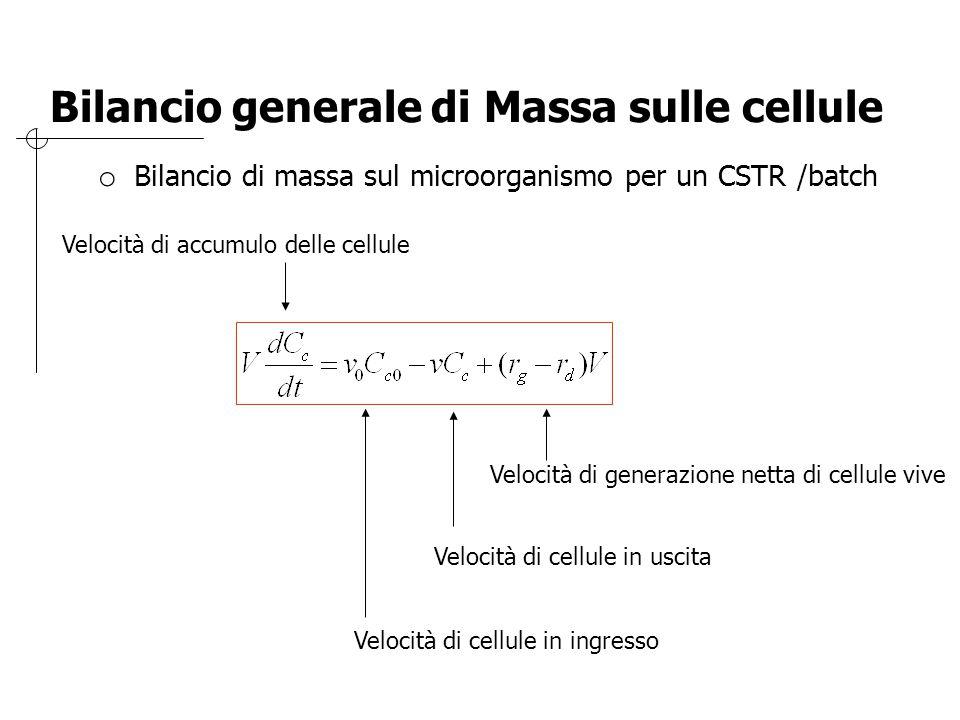 Bilancio generale di Massa sulle cellule