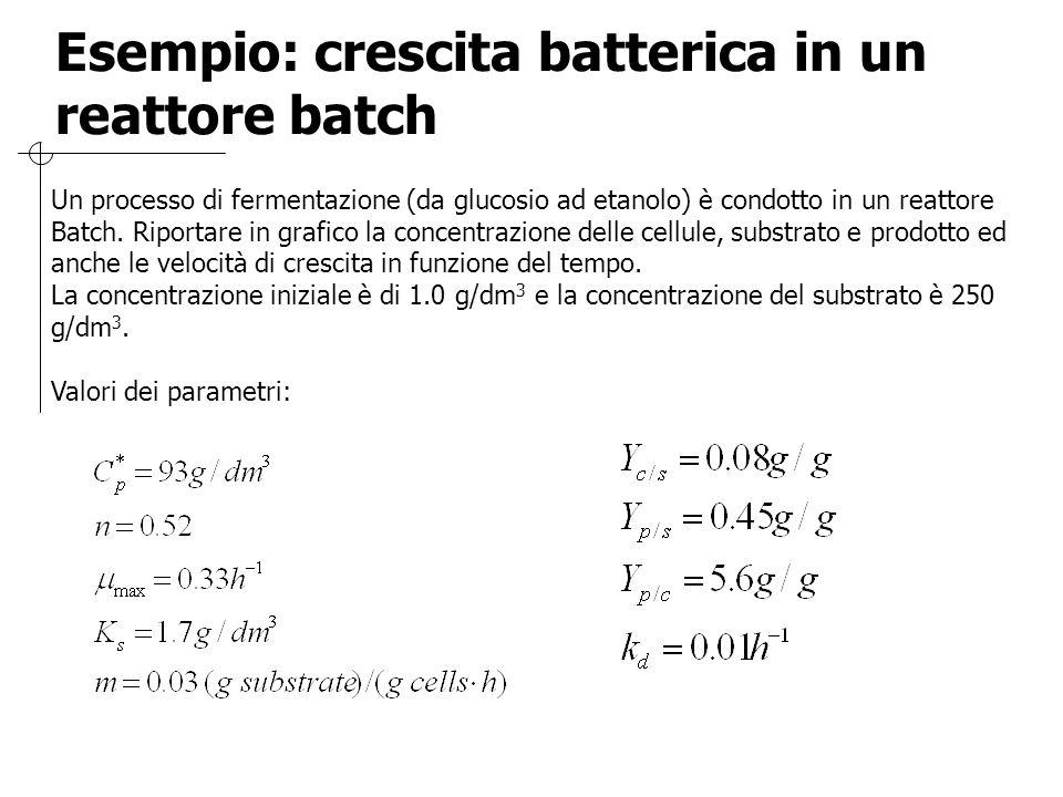 Esempio: crescita batterica in un reattore batch