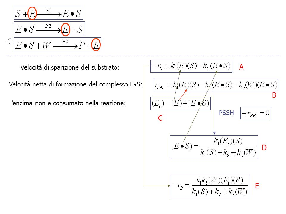 A B C D E Velocità di sparizione del substrato: