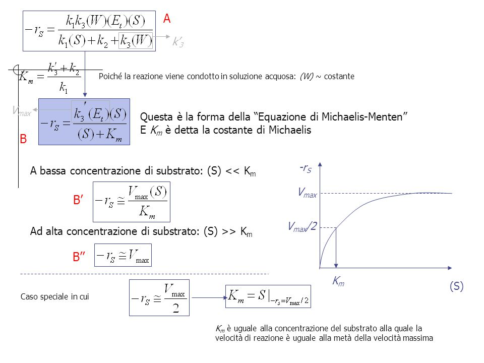 A k'3. Poiché la reazione viene condotto in soluzione acquosa: (W) ~ costante. Vmax. Questa è la forma della Equazione di Michaelis-Menten