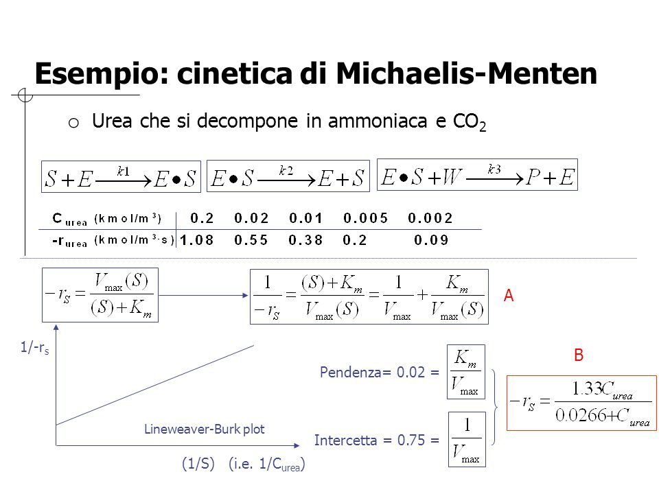 Esempio: cinetica di Michaelis-Menten