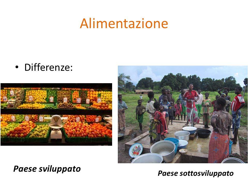 Alimentazione Differenze: Paese sviluppato Paese sottosviluppato