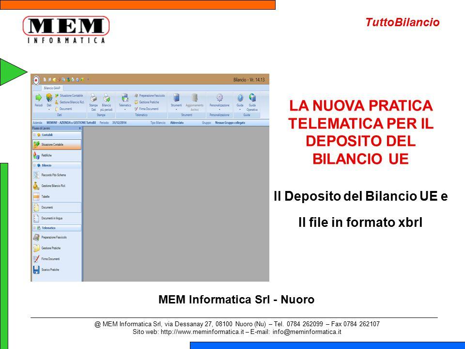LA NUOVA PRATICA TELEMATICA PER IL DEPOSITO DEL BILANCIO UE