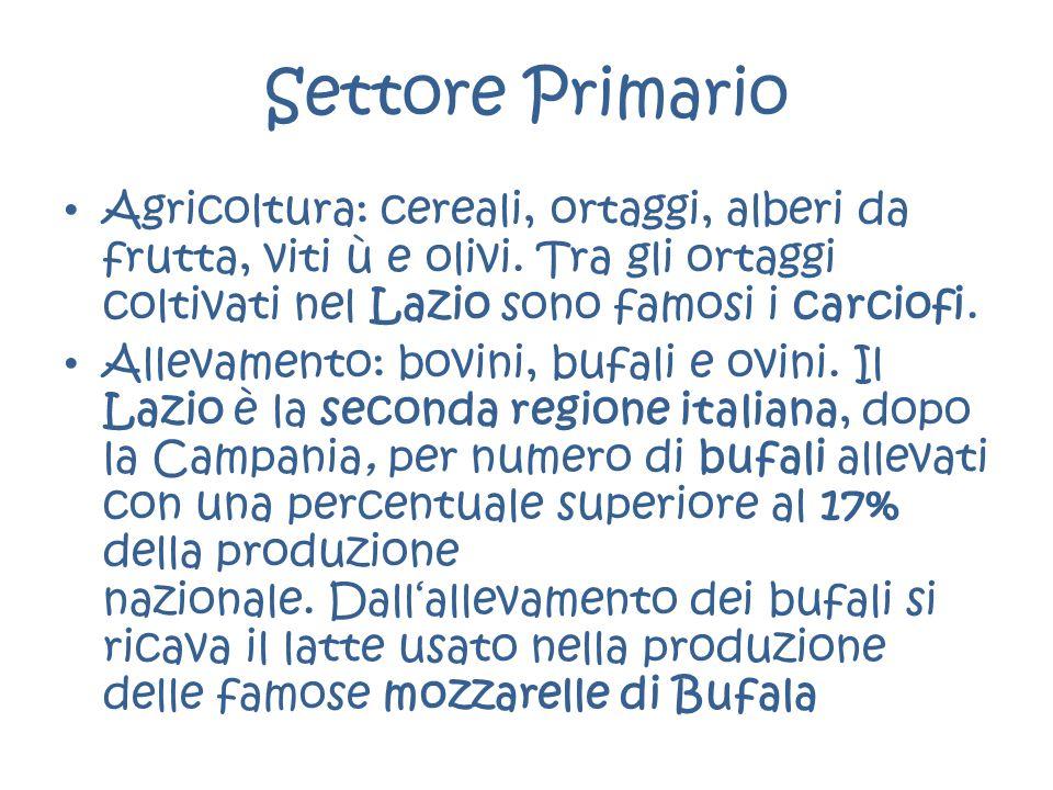 Settore Primario Agricoltura: cereali, ortaggi, alberi da frutta, viti ù e olivi. Tra gli ortaggi coltivati nel Lazio sono famosi i carciofi.