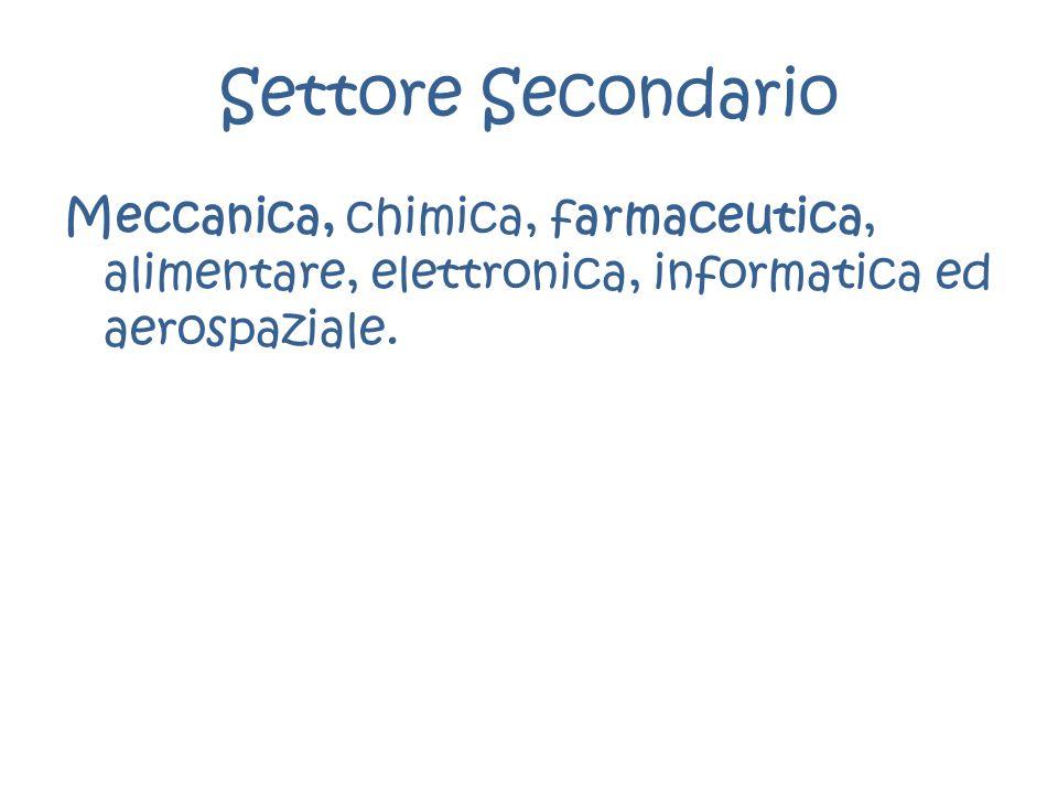 Settore Secondario Meccanica, chimica, farmaceutica, alimentare, elettronica, informatica ed aerospaziale.