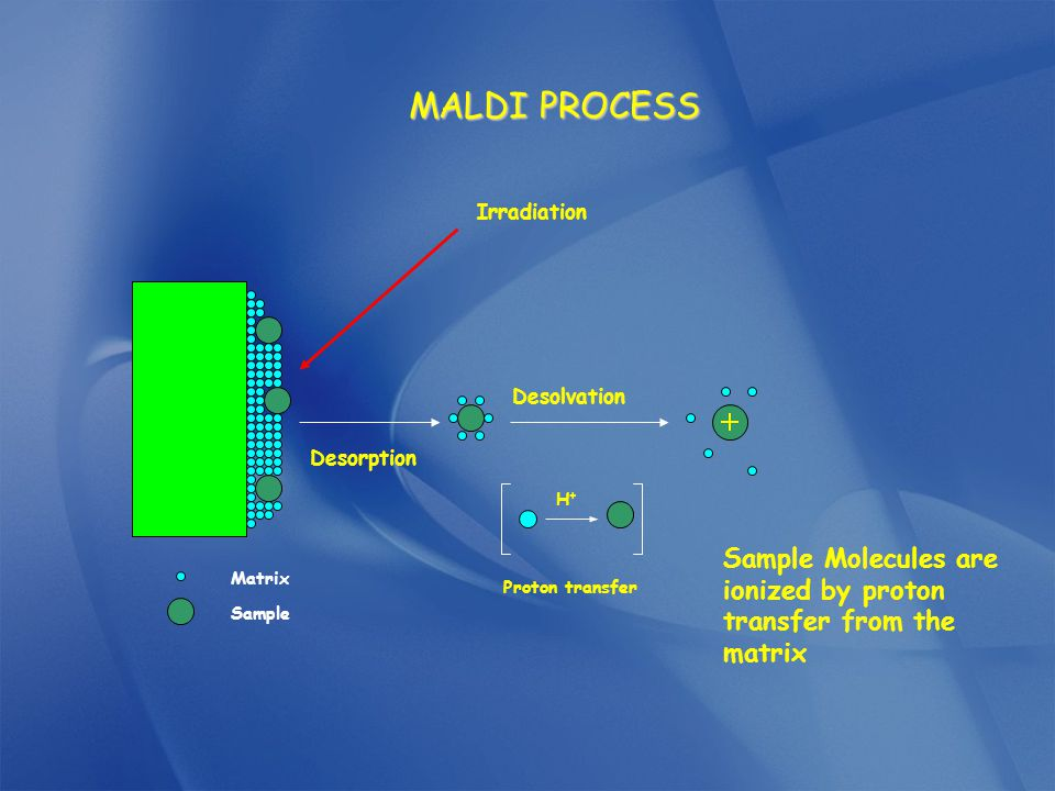 MALDI PROCESS Irradiation. H+ Proton transfer. Desolvation. Desorption. Sample Molecules are ionized by proton transfer from the matrix.