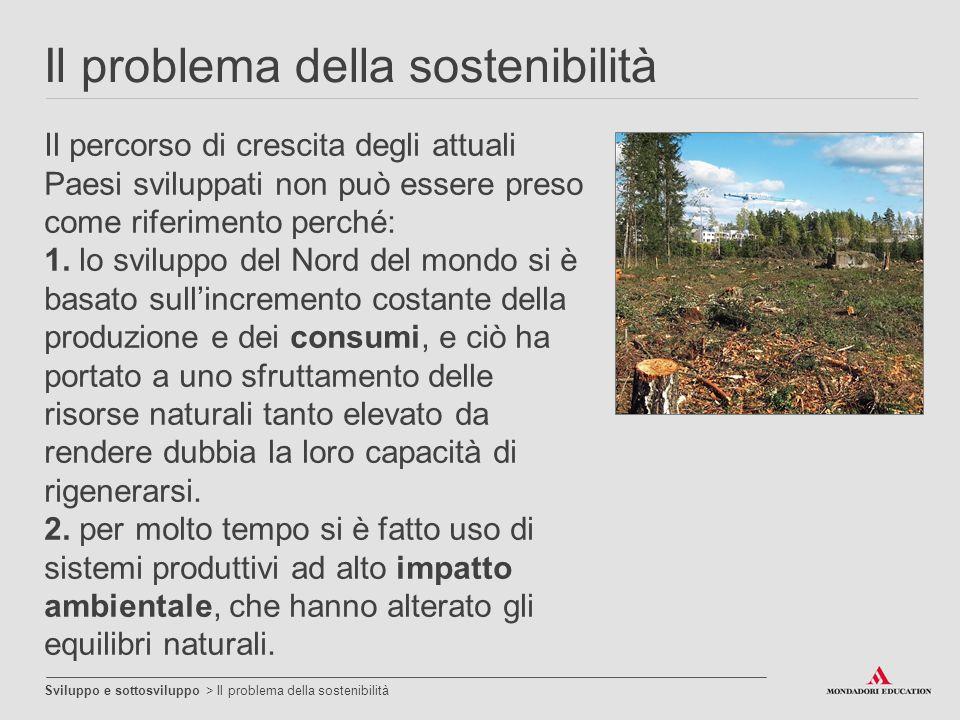 Il problema della sostenibilità
