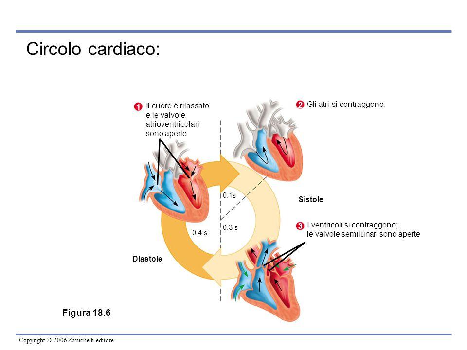 Circolo cardiaco: Figura 18.6 Il cuore è rilassato 2