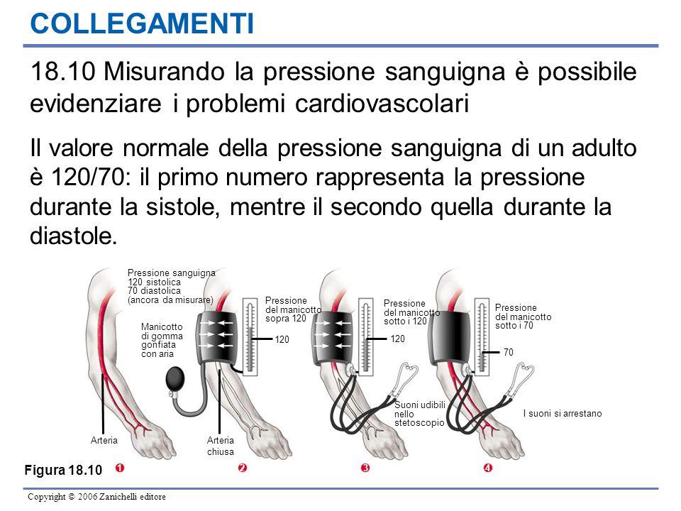 COLLEGAMENTI 18.10 Misurando la pressione sanguigna è possibile evidenziare i problemi cardiovascolari.