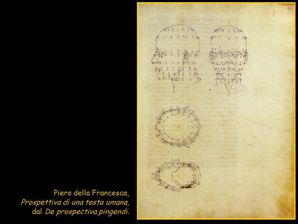 Il DISEGNO di PIERO è caratterizzato da un TOCCO LEGGERISSIMO, grazie alla PENNA APPUNTITA o alla PUNTA METALLICA ; il disegno doveva essere poi rifinito a penna