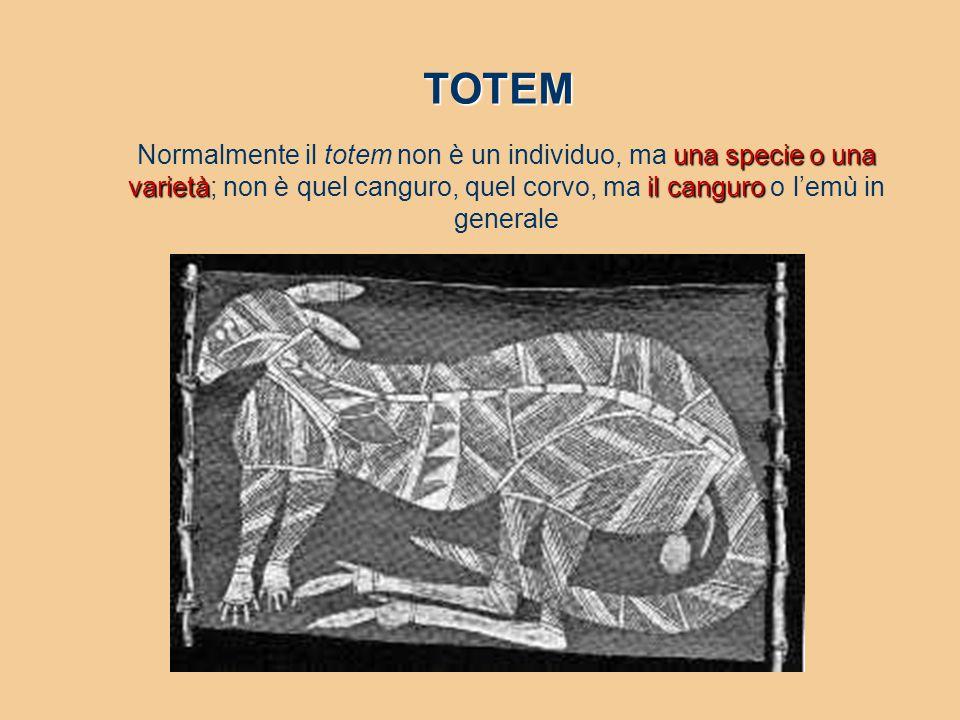 TOTEM Normalmente il totem non è un individuo, ma una specie o una varietà; non è quel canguro, quel corvo, ma il canguro o l'emù in generale.