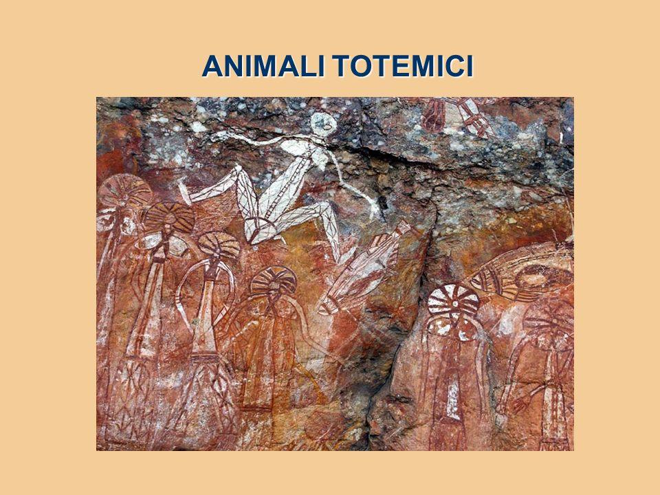 ANIMALI TOTEMICI